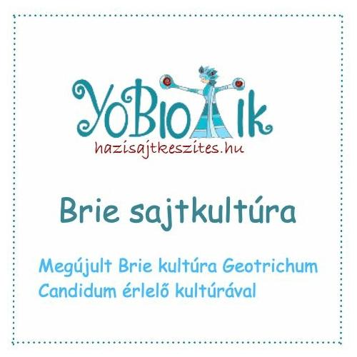 Brie sajtkultúra Geotrichum Candidummal