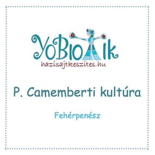 P. Camemberti - fehérpenész kultúra