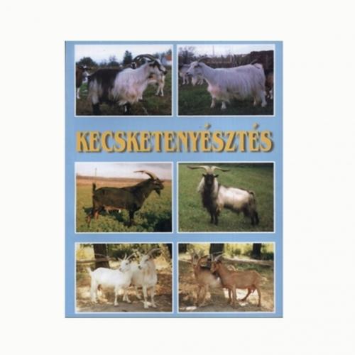 kecsketenyésztés