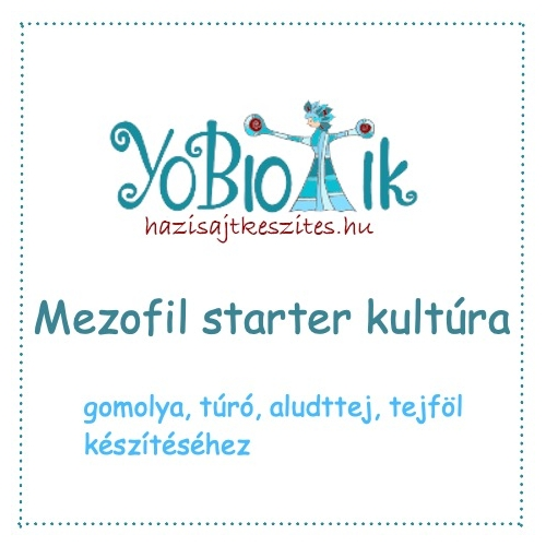 Mezofil starter kultúra - YoBiotik - 5 db