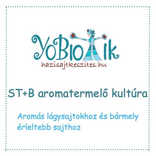 ST+B aromatermelő kultúra