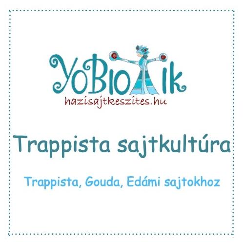 Trappista, gouda, edami sajtkultúra -YoBiotik - 5 db