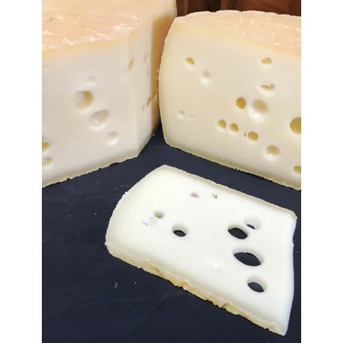 Tarppista sajt